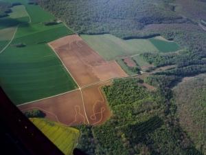 Traces étranges dans les champs