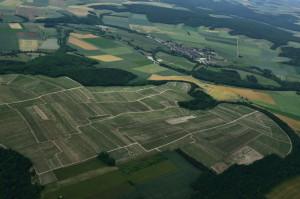 Les vignes en juin - Vue aérienne